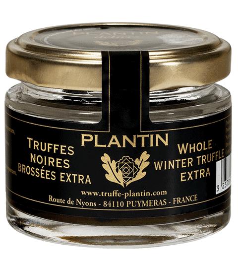 Truffe Noire Entière Extra TUBER MELANOSPORUM – PLANTIN